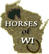 Wisconsin Horses NetRing - Want to